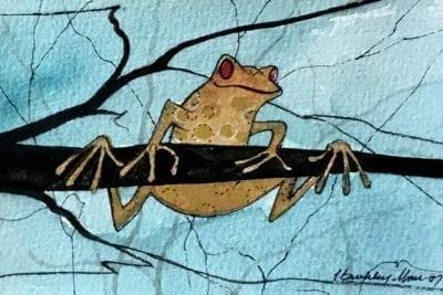 Original watercolor hand painted by P Buckley Moss. Red eyed golden frog hanging from branch.