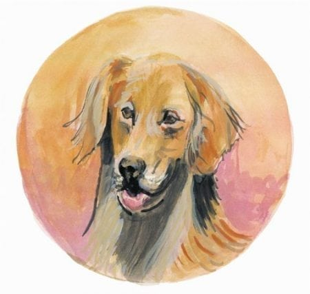 pbuckleymoss-print-limitededition-dog-golden-retriever