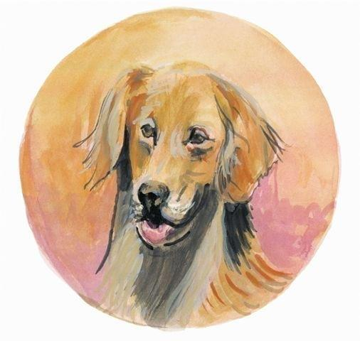 Golden Retriever from the dog collection by P Buckley Moss captures her love of painting realistic dogs and animals by the artist. Colors of tan, rust, gray and rose.