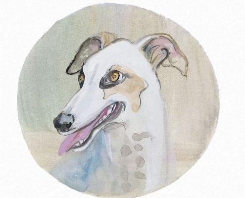 pbuckleymoss-print-limitededition-dog-greyhound