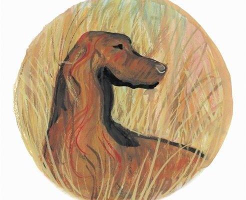 pbuckleymoss-print-limitededition-dog-irish-setter