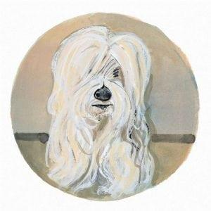 pbuckleymoss-print-limitededition-dog-lhasa-apso