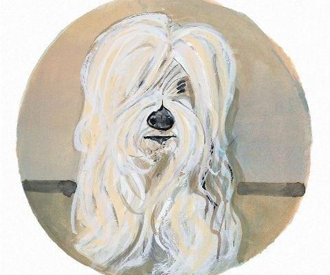 pbuckleymoss-print-limitededition-dog-lhasa-apso