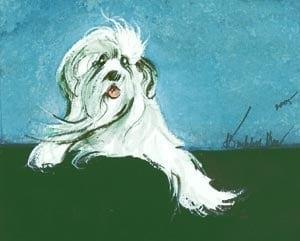 Love Me limited edition print by P Buckley Moss features and adorable shaggy dog in white with dark gray and black highlights on a background of darker green and aqua.