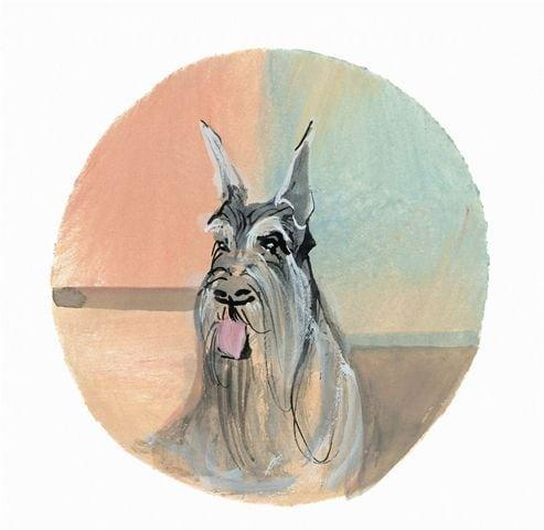 Schnauzer limited edition print by artist P Buckley Moss features the breed in grays, tan and black with a background of peach, aqua and tangerine.