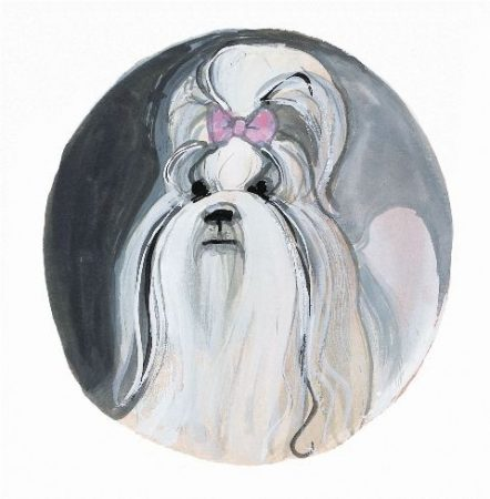 pbuckleymoss-print-limitededition-dog-shih-Tzu