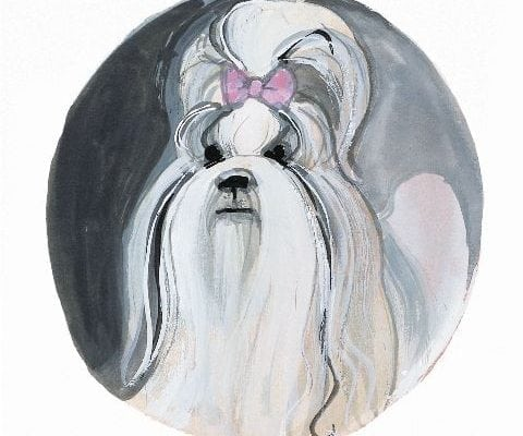 pbuckleymoss-print-limitededition-dog-shih-Tzu