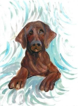 Chocolate Lab limited edition print by P Buckley Moss features a realistic looking dog in browns, blacks and rusts with a background of turquoise, white and tan shading.