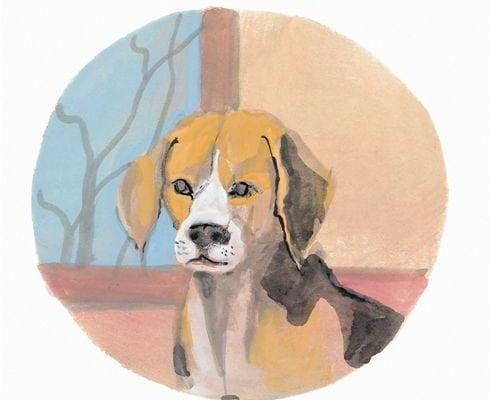 pbuckleymoss-print-limitededition-dog-beagle