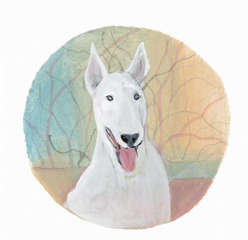 pbuckleymoss-print-limitededition-dog-bull-terrier