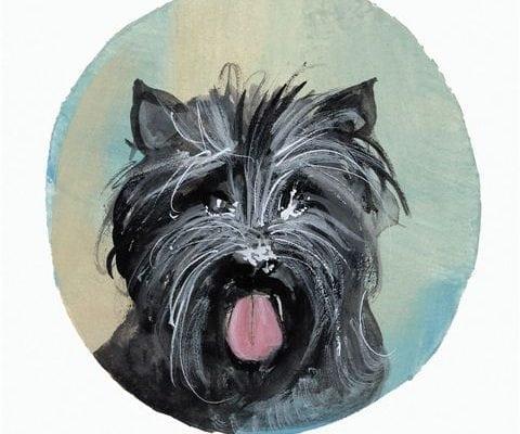 pbuckleymoss-print-limitededition-dog-cairn-terrier