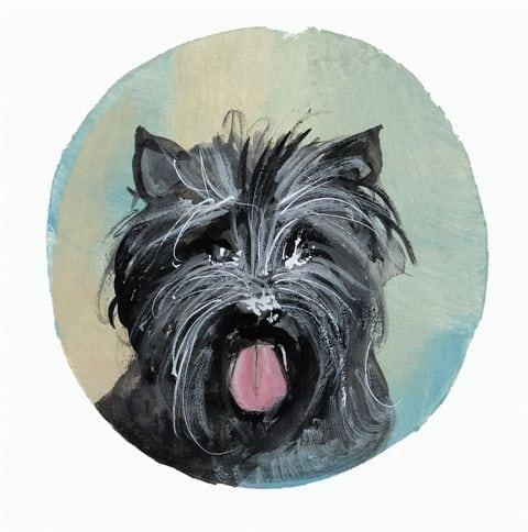pbuckleymoss-print-limitededition-dog-cairn-terrier