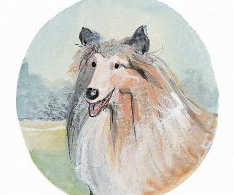Collie signed and numbered limited edition print by American artist P Buckley Moss features a realistic Collie dog in white tan, rust and gray with a background of light aqua, soft green and tan.