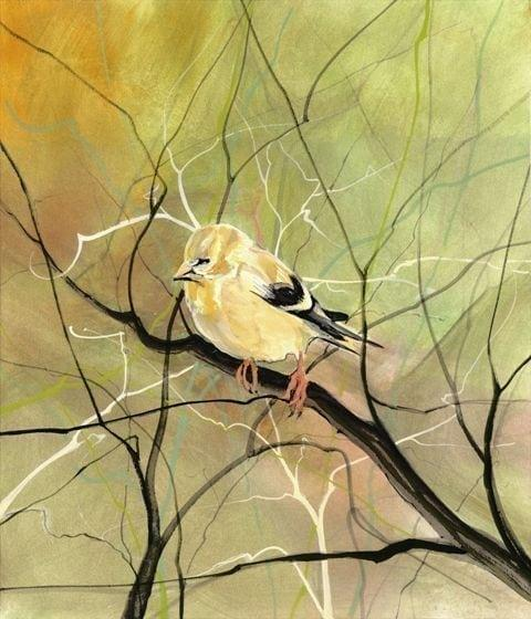 pbuckleymoss-print-giclee-bird-goldfinch