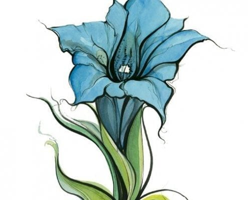 pbuckleymoss-limitededition-print-flower-floral-Lily