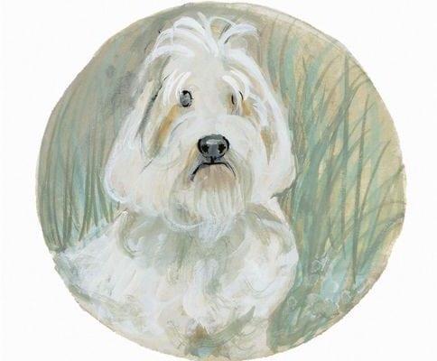 pbuckleymoss-print-limitededition-dog-petit-basset-griffon