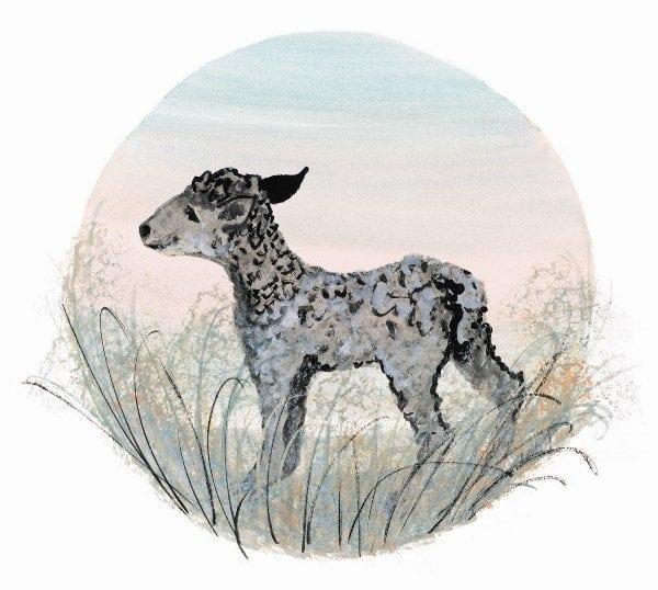 NurseryRhyme-Spring-Lamb-PBuckleyMoss