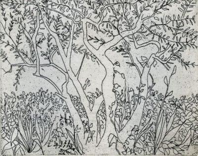 pbuckleymoss-etching-limitededition-trees-landscape