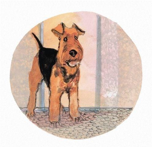 pbuckleymoss-print-limitededition-dog-welsh-terrier