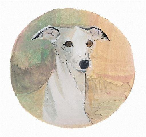 pbuckleymoss-print-limitededition-dog-whippet