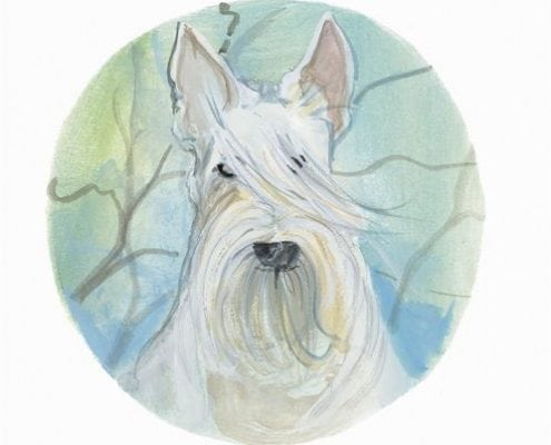 pbuckleymoss-print-limitededition-dog-white-scottish-terrier