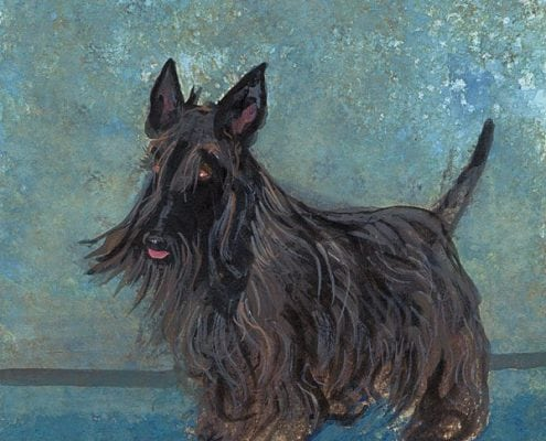 pbuckleymoss-print-limitededition-dog-blackscottish-terrier