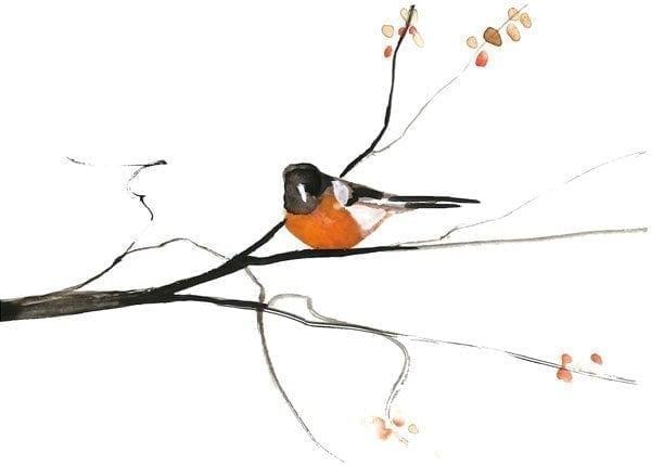 Bird-Spring- PBuckleyMoss-Print-LimitedEdition-CanadaGooseGallery-WaynesvilleOhio