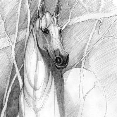 Earthly Spirit limited edition giclee print by P Buckley Moss features a horse coming from the woods featuring colors of white and light and darker gray tones.