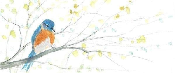 Spring-Bird-PBuckleyMoss-LimitedEdition-Print