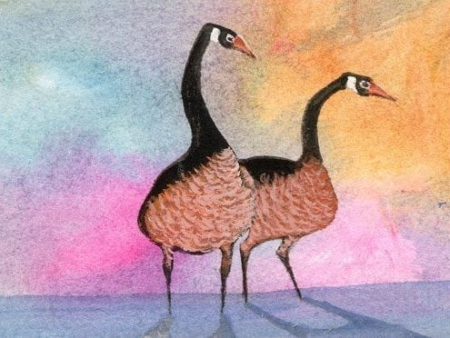 Greeting the Day limited edition print by P Buckley Moss features two geese partners in a colorful background of gold, pink and shades of blue.