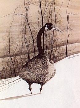 goose-vintage-art-pbuckleymoss-limitededition-print-landscape