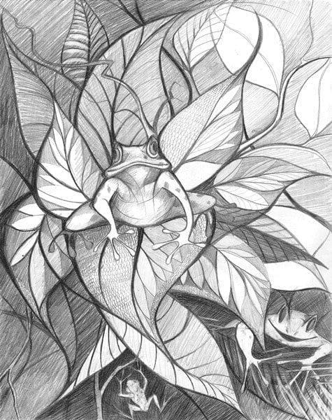 Three frogs blending into the garden of hostas. Limited edition print edition by P Buckley Moss