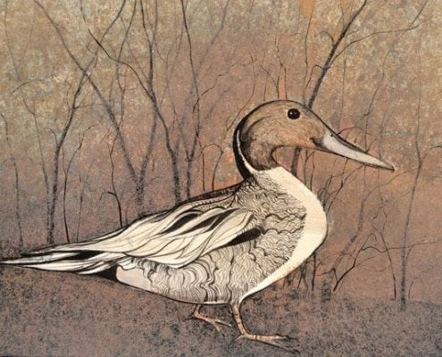Nesting limited edition print by P Buckley Moss features duck life in a rustic setting with colors of soft rust and earth tones.