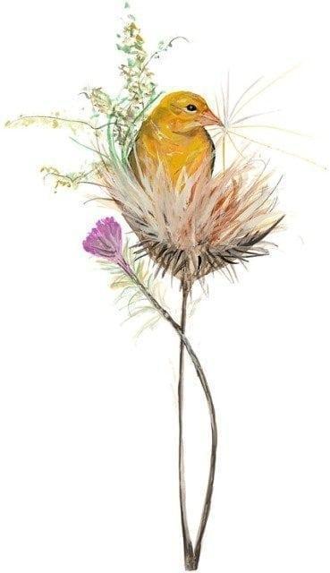 Bird-Limitededition-print-PBuckleyMoss-art