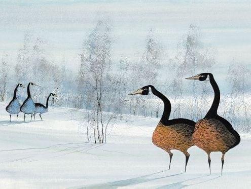 PBuckleyMoss-Waynesville-Ohio-CanadaGooseGallery-Art-Artist-LimitedEdition-Print-Goose-Geese-Winter-Landscape