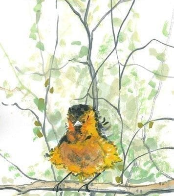 Bird-Nature-limitededition-print-pbuckleymoss-decor