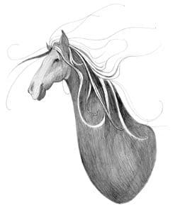 Wild as the Wind limited edition print by P Buckley Moss features a sketch of a horse in shades of grays highlighted with white.
