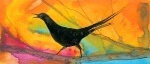 summer-coral-color-bird-limited-edition-prints-pbuckleymoss