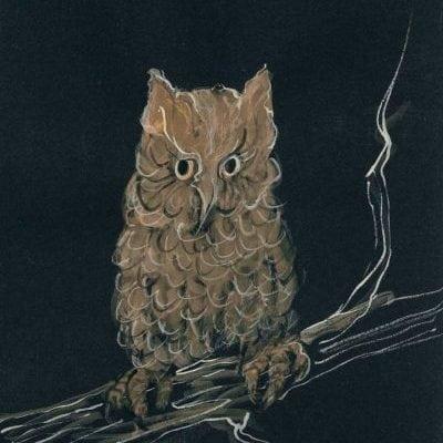 pbuckleymoss-print-giclee-print-owl