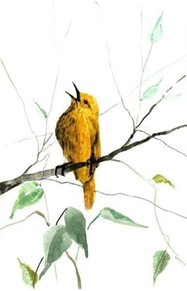 Singing to the Heavens limited edition print by P Buckley Moss features a small yellow bird singing from his perch on a branch with leaves.