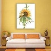 PBuckleyMoss-Waynesville-Ohio-CanadaGooseGallery-Art-Artist-LimitedEdition-Print-SongOfTheSunflower