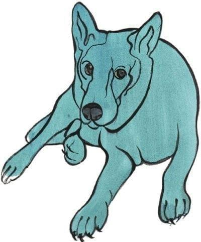 pbuckleymoss-print-limitededition-dog-lechienblue
