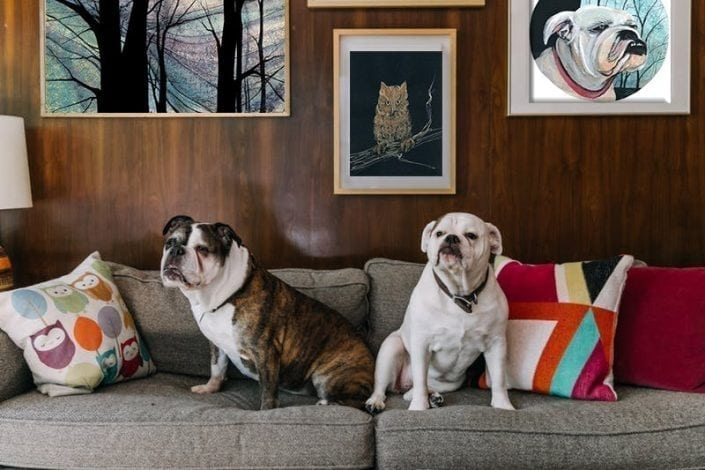 CanadaGooseGallery-WaynesvilleOhio-pbuckleymoss-pets-dogs-art-artfulrooms