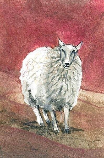 CanadaGooseGallery-Waynesville-Ohio-Lamb-nature-interiordesign-pbuckleymoss-art-limitededition-prints-giclee