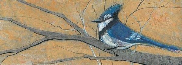 Bird-bluebird-nature-interiordesign-pbuckleymoss-art-limitededition-prints-giclee