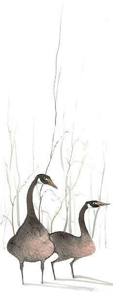 goose-geese-nature-interiordesign-pbuckleymoss-art-limitededition-prints-giclee