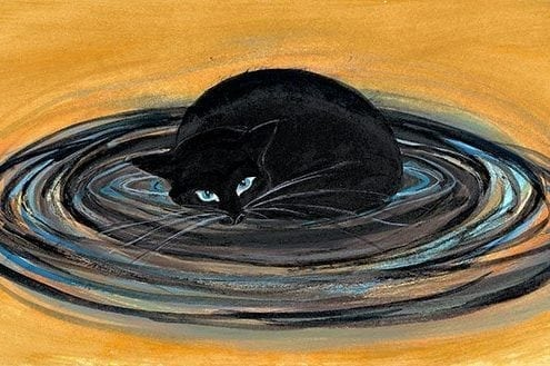 CanadaGooseGallery-Waynesville-Ohio-cat-nature-interiordesign-pbuckleymoss-art-limitededition-prints-giclee