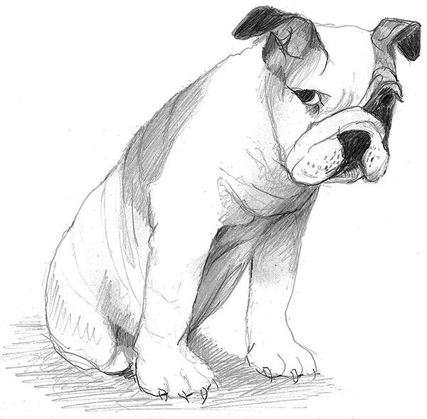 You Promised limited edition print by P Buckley Moss features a sweet dog that seems to be pouting. Colors are shades of gray and black in this sketch.