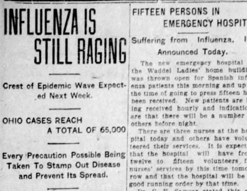 Flu History Article